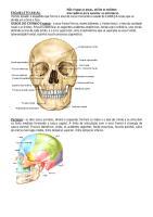 Anatomia_Humana_-_Sobotta_-_Volume_1.pdf