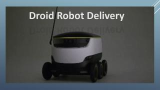 Droid Delivery.pdf