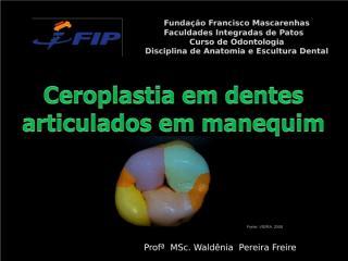 aula_2_-_Ceroplastia.PPTX