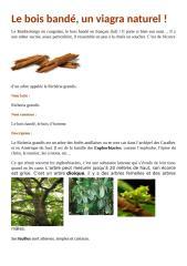 bois-bandc3a9.docx