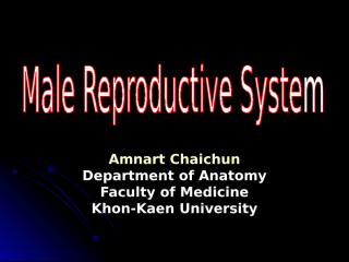 male.repro.sys.ppt